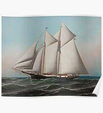 Vintage Schooner Sailboat Illustration (1887) Poster