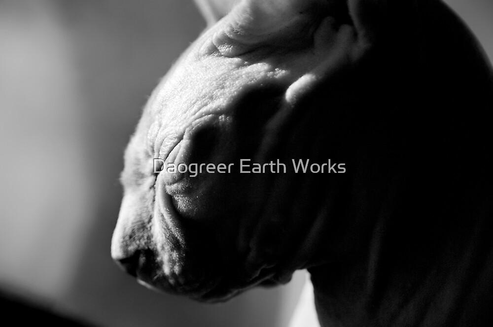 Warm Company by Daogreer Earth Works