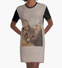 Ozzy the kitten Graphic T-Shirt Dress