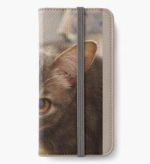 Ozzy the kitten iPhone Wallet/Case/Skin
