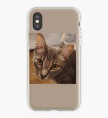 Ozzy the kitten iPhone Case