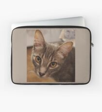 Ozzy the kitten Laptop Sleeve