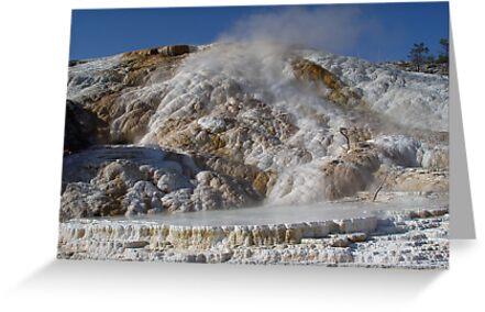 Mammoth Hot Springs by May Lattanzio