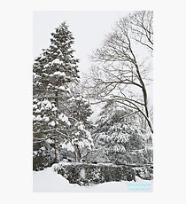 Winter Wonderland Storm Photographic Print
