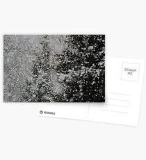Falling Snow Postcards