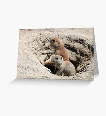prairie dogs watching from hole Greeting Card