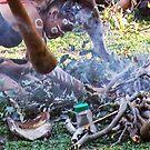 tribal smoke by OZDOOF