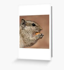 The Nibbler Greeting Card