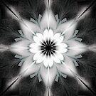 Snowflake Imitation by Barbara A Lane