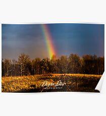 Vibrant Rainbow Poster