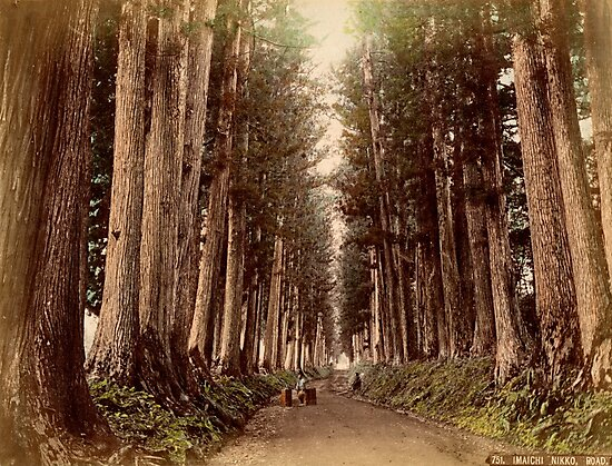 Imaichi Nikko Road, Japan by Fletchsan