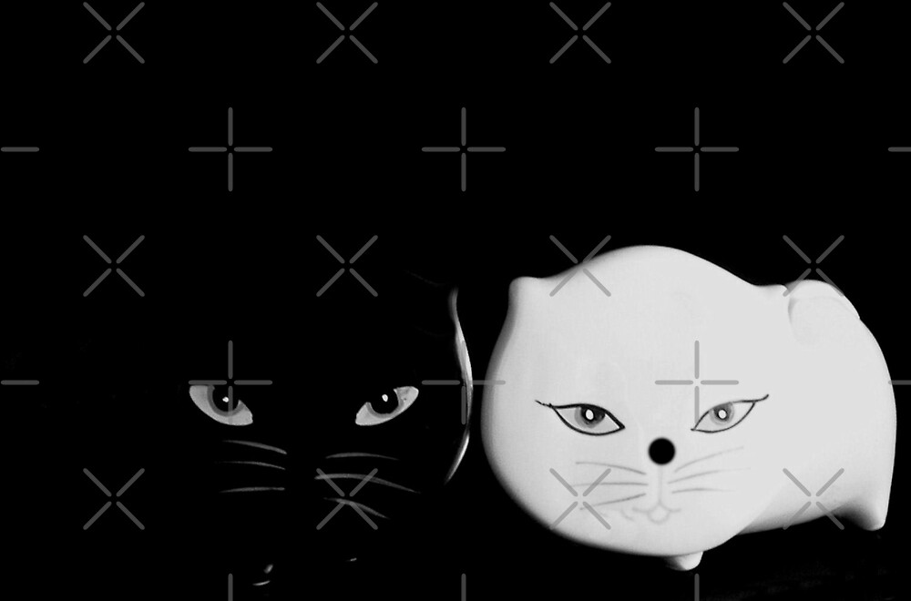 Black & White cats by TeAnne