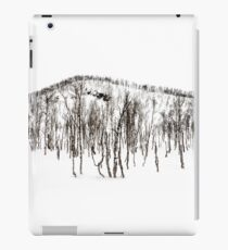 Northern Norway winter forest  iPad Case/Skin