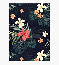 Dark tropical flowers Photographic Print