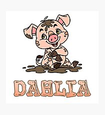 Dahlia Piggy Photographic Print