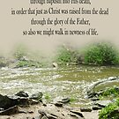 Walk in Newness of Life ~ Romans 6:4 by Robin Clifton