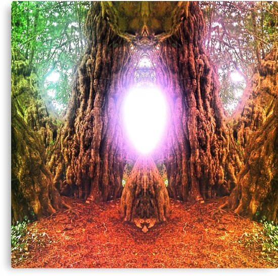 Yew Altar of Transition, The Ashbrittle Yew, Somerset by FaeryRealm
