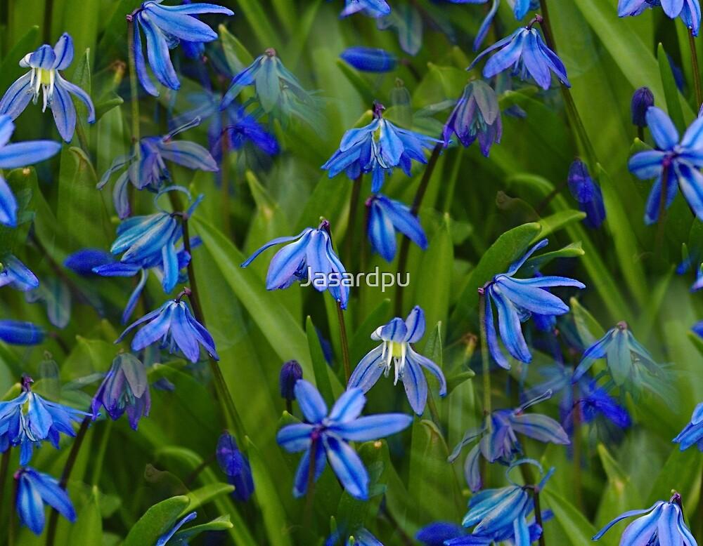 Flower sea in blue by Jasardpu