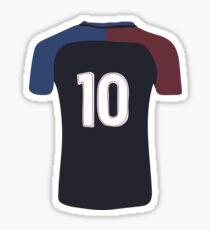 USA Jersey Sticker