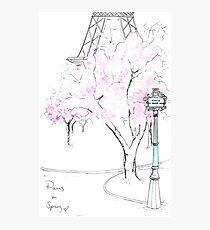 Paris in Bloom Photographic Print