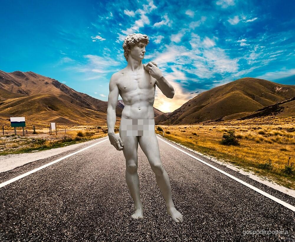 David On Highway by gospodinpopara