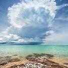 Crazy Stormcloud by Mieke Boynton