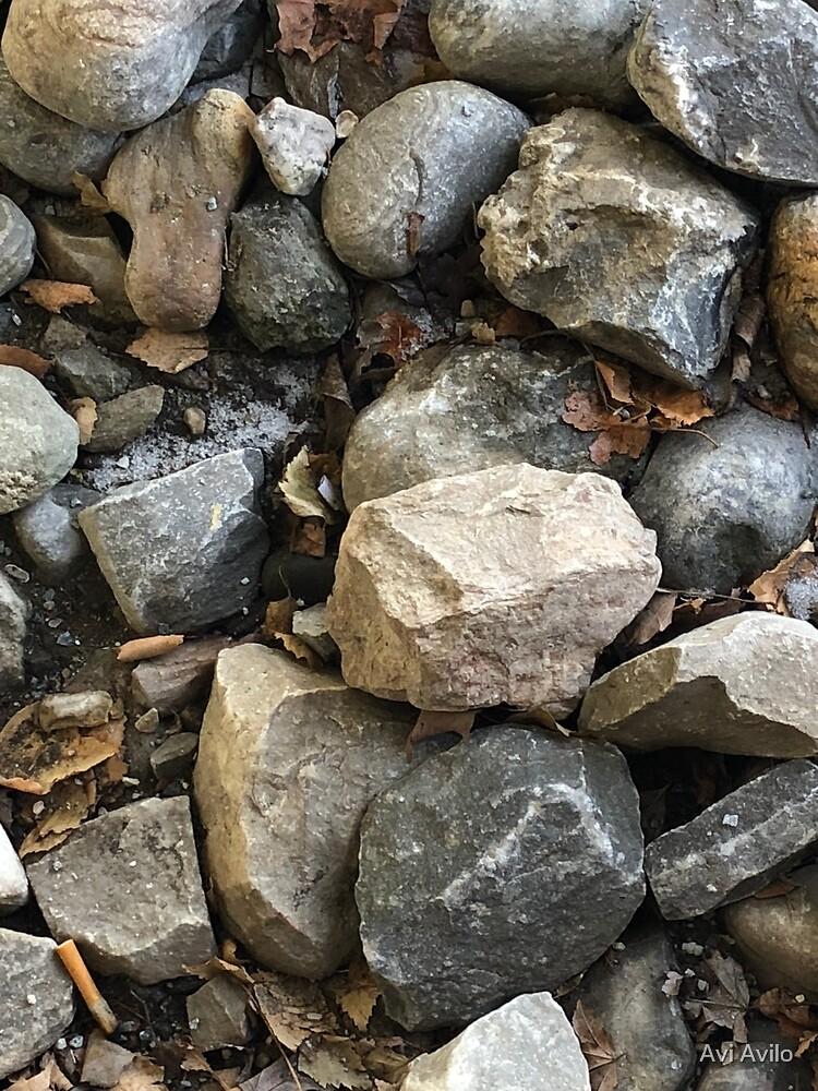 Beautiful rocky floor by Avi Avilo