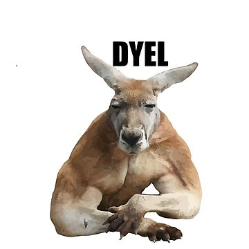 Do you even lift kangaroo - photo#46