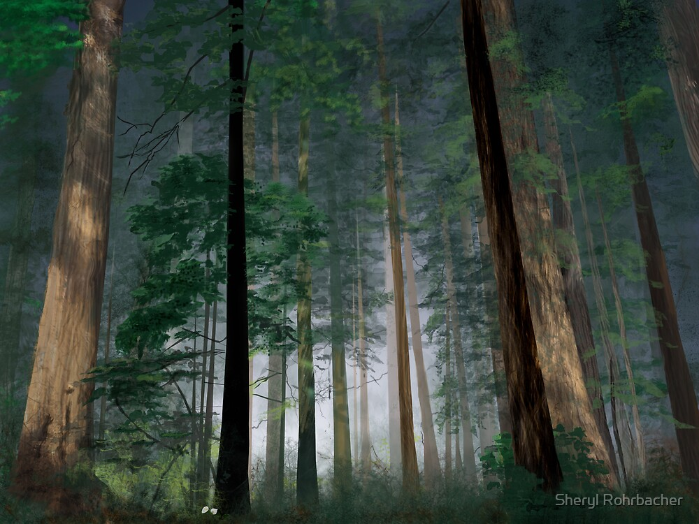 The Forest of Dean by Attani