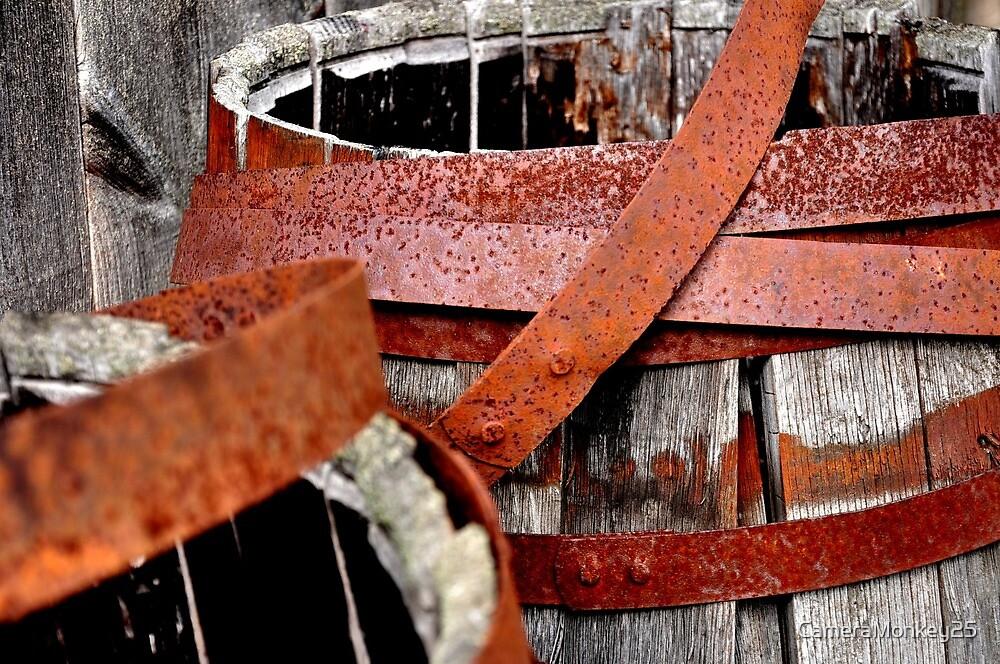 Rusty Rings by CameraMonkey25