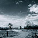 Farmland on Lookout Road by Pamela Hubbard