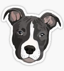 Pit Bull/ Puppy/ Blue Pit/ Dog/ Gray Pit Bull/ Blue Pit Bull/ Pet/ Cute Sticker