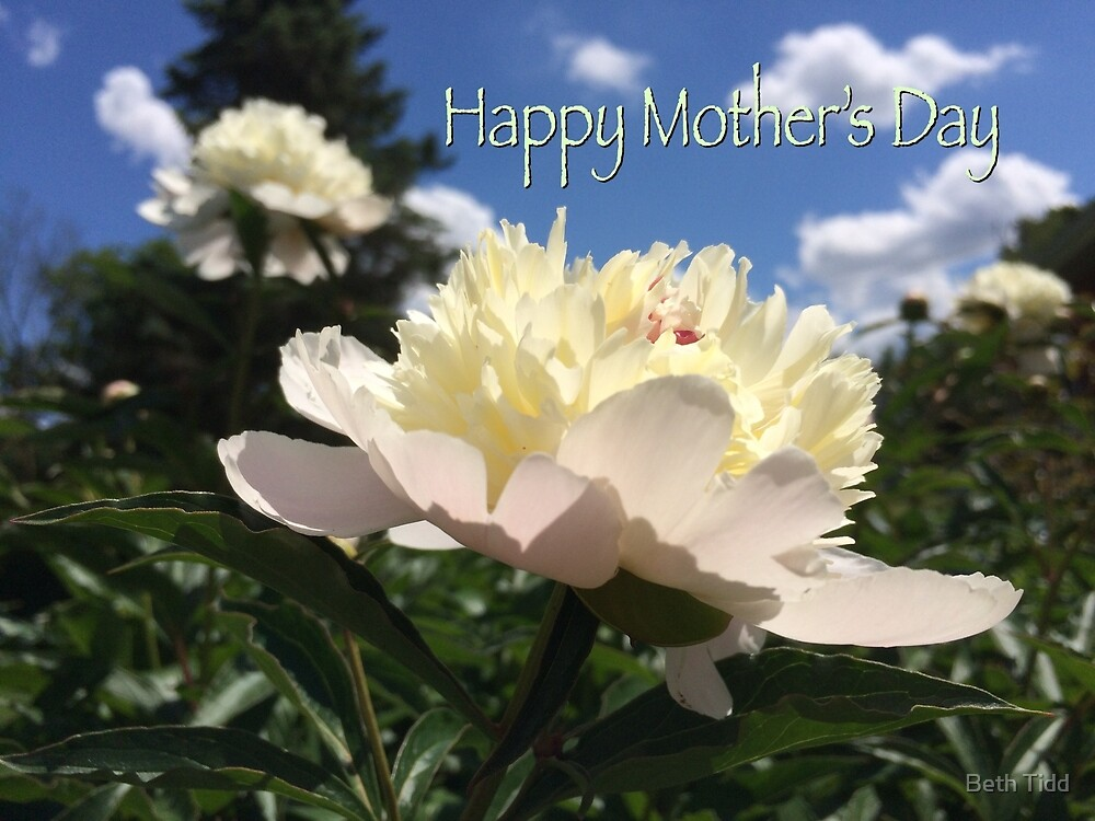 Mother's Day peony by Beth Tidd