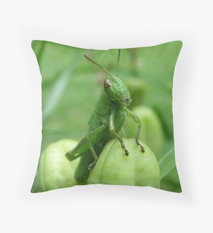 What? Is There A Problem? Throw Pillow