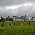 Stormy Country Farm by Linda Miller Gesualdo