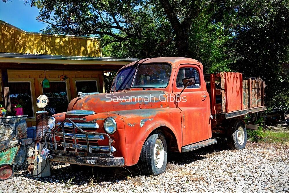 Dodge by Savannah Gibbs