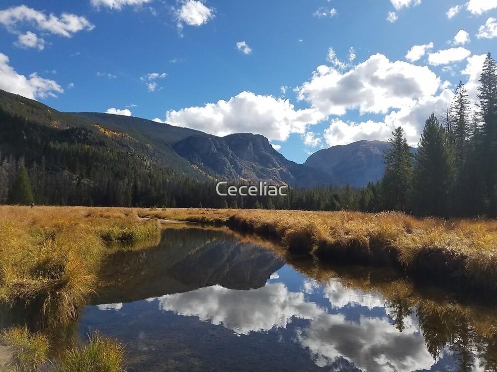 Reflection by Ceceliac