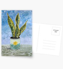 Sans II Postcards