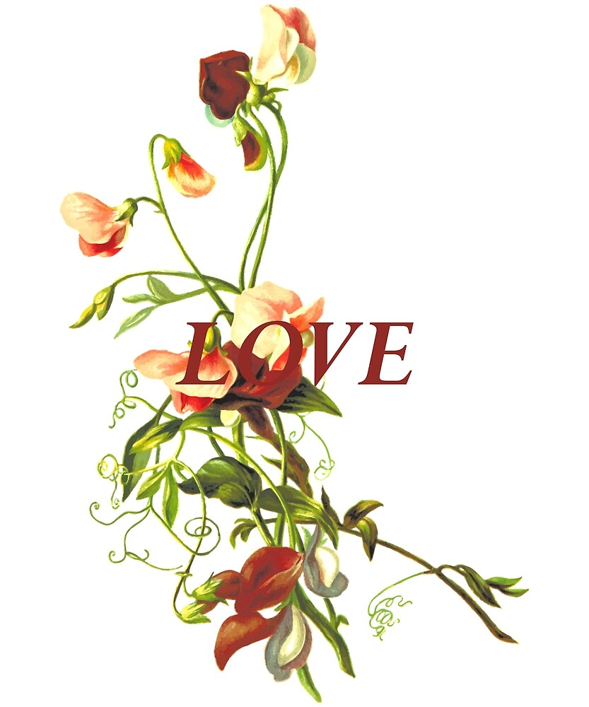 Beautiful Love Roses Print by andresmv