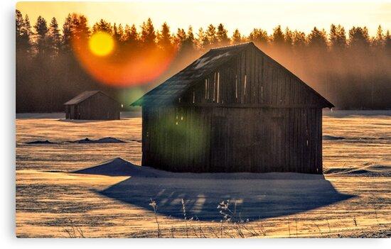 Sunrise by Petri Naukkarinen