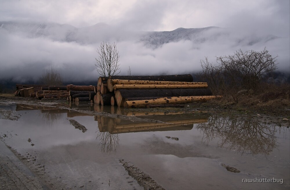 Timber Logs With A Foggy Mountain View by rawshutterbug