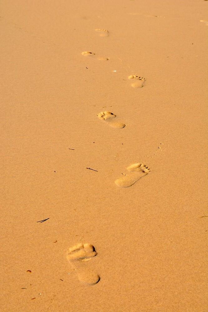 Footprints by AlizadaStudios