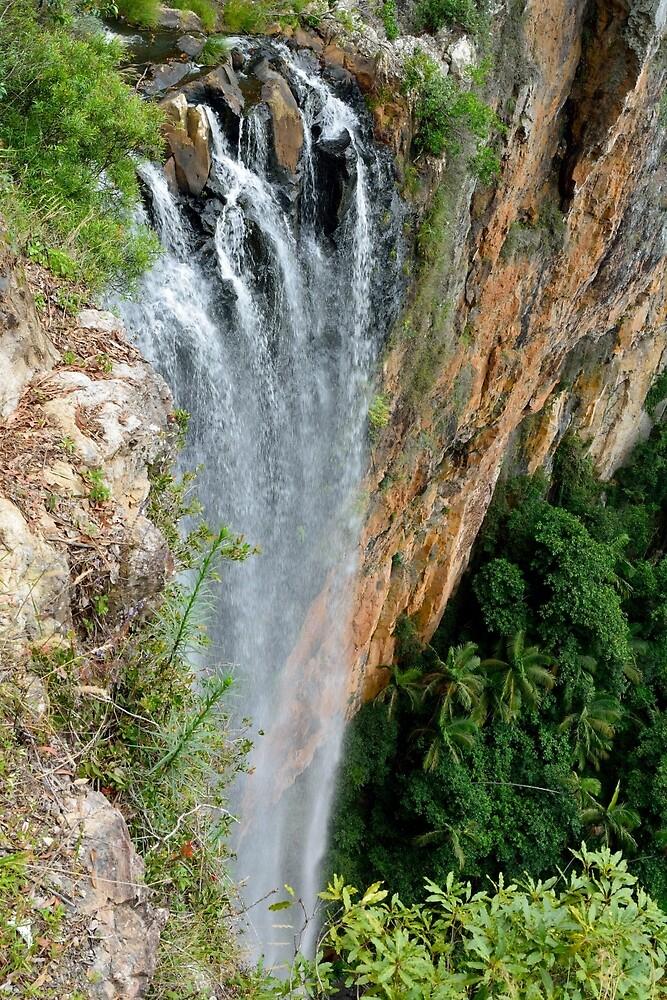 Brook Falls in Springbrook NP, Australia by AlizadaStudios