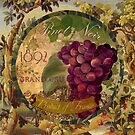 Wines of France Pinot Noir by mindydidit