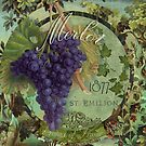 Wines of France Merlot by mindydidit