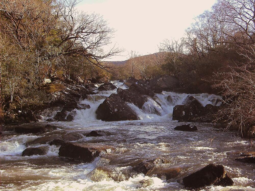 Ripping River Gap of Dunloe Co Kerry Ireland by James Cronin