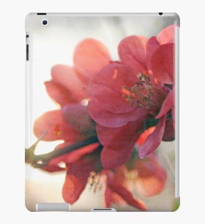 Evening Blush iPad Case/Skin