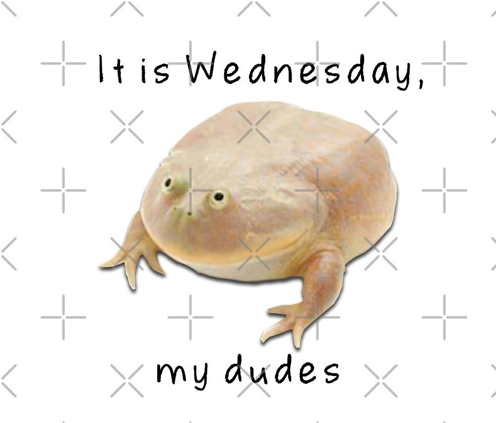 It is Wednesday, my dudes - me_irl\