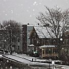 Snowy Day by NJC Photography