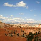 Bryce Canyon Utah #3 by Martina Fagan